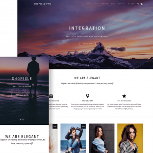 theme-wordpress-shopisle