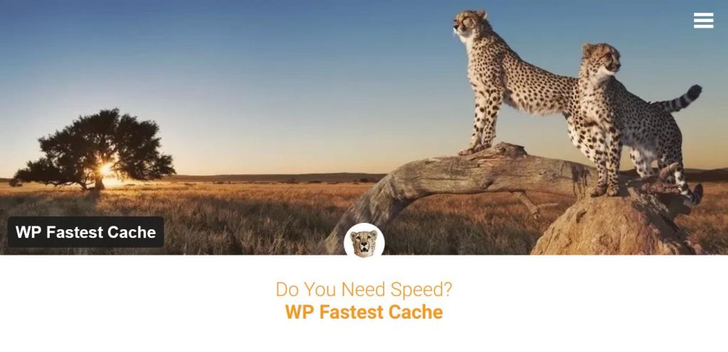 plugin-wp-fastest-cache