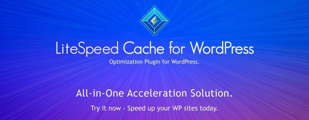 plugin-litespeed-cache