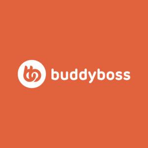 jasa-install-theme-buddyboss